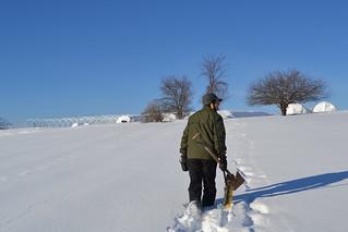 Trekking through deep snow to get to the caterpillars.