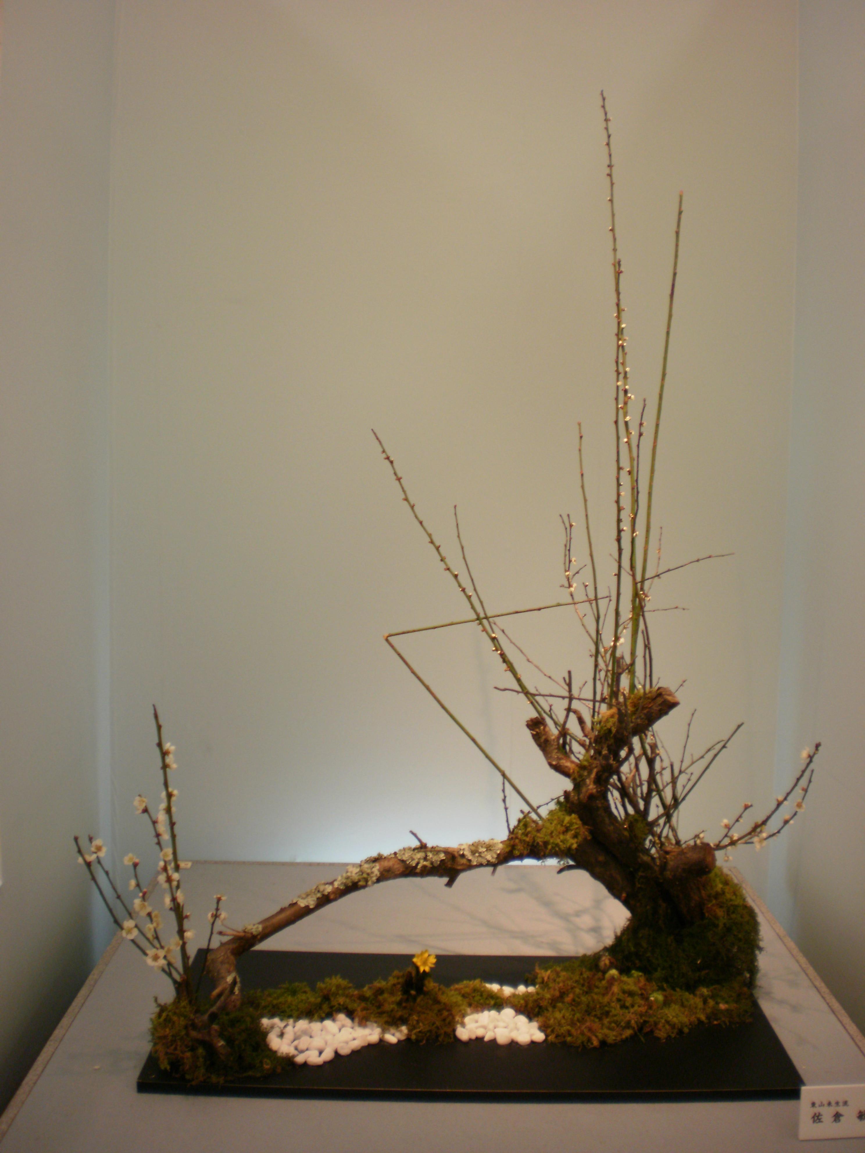 Japanese flower arrangement 37 Ikebana いけばな