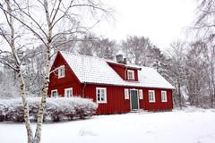 Sverige 2010 & 2011