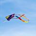 Kite Fest 2011-0133.jpg