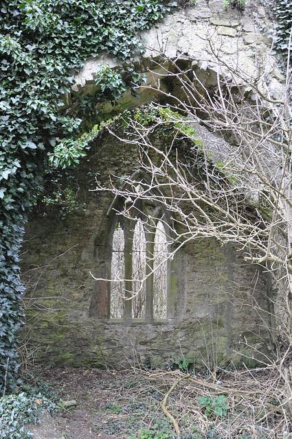 bord failte cork ~ castlelyons abbey, saint marys  flickr  photo sharing!