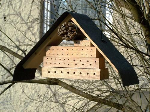 flickriver most interesting photos from insektenhotels pool. Black Bedroom Furniture Sets. Home Design Ideas