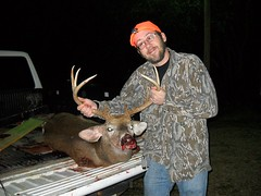 animal, hunting, deer, deer hunting,