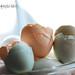 Small photo of eggshells