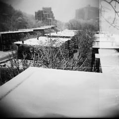 rooftops of JP