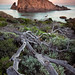 Moonset - Sugarloaf Rock - Western Australia