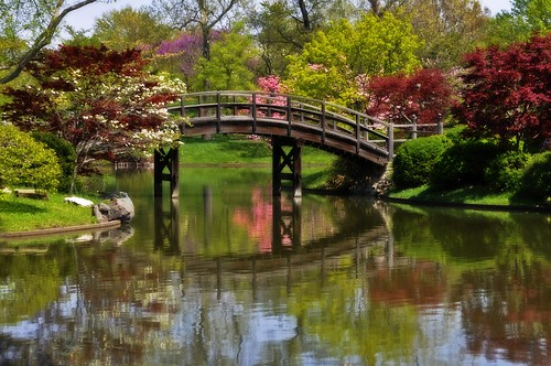 bridge trees nature reflections garden landscape botanical spring pond scenery blossoms stlouis blooms 2010 missouribotanicalgarden coth supershot naturesgarden absolutelystunningscapes damniwishidtakenthat coth5 photocontesttnc11 dailynaturetnc11