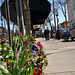 Street flowers in Ashland Oregon