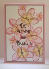 110318 Linda congrats pink flowers