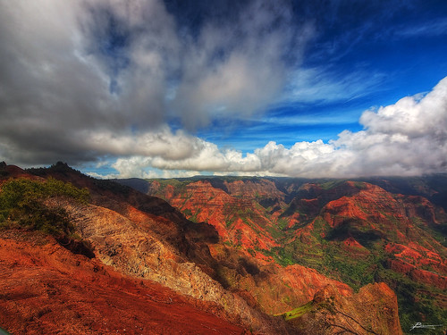 ocean statepark above old trees red wild vacation sky cliff mountain holiday history tourism nature beauty clouds relax paul outdoors volcano hawaii see big view pacific general dr altitude air hill great north wide large dramatic peak scene lookout hwy formation ridge soil level valley massive kauai area stunning waimea elevated activity breathe visitor ultra height immense impressive dex rd steep depths unwind 550 splendor kokee 7mm alakai kekaha ahupuaa colorphotoaward allxpressus dexxus napalikona 20110209ha4kauai50446