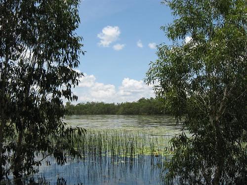Manton Dam 4