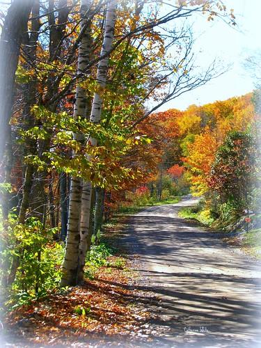 autumn rural landscapes scenery atlanticcanada hamptonarea