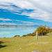 Lake Pukaki, Nr Mount Cook, New Zealand