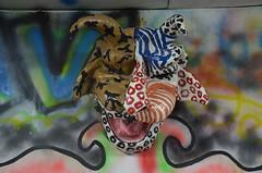 IOM-Carnival2011 054