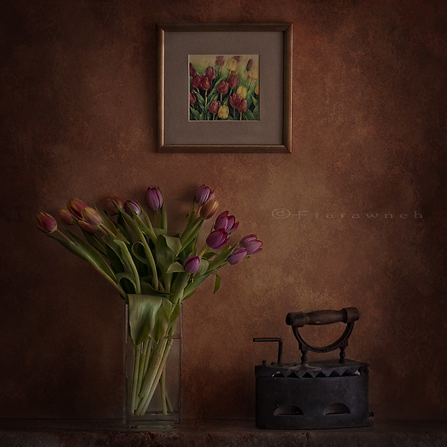 Tulips and Iron