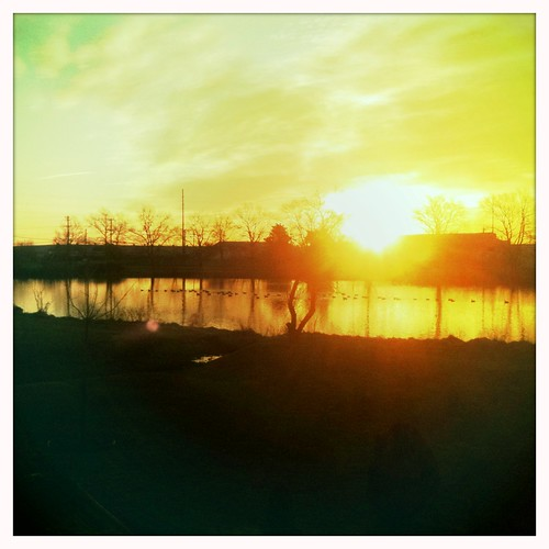 trees sky orange sun reflection clouds sunrise geese pond ducks iphone iphonography hipstamatic