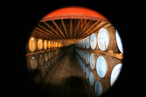 Maturing Whisky Casks, Balvenie Distillery