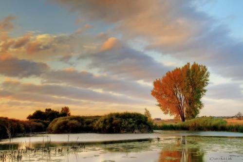 sunrise reflections landscape pond colorado denver aurora effect orton cherrycreekstatepark