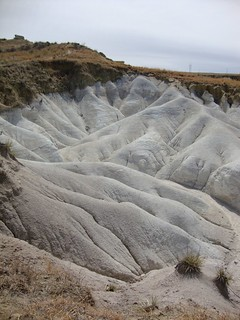 Bleached and beached, Paint Mines, Colorado