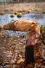 Unsichtbare Landschaftsgestalter by Penti II