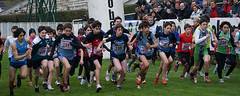 athletics, sports, running, recreation, duathlon, cross country running, person,