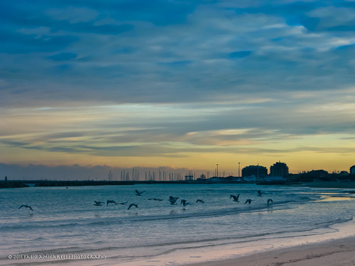 sunset sea sky italy panorama costa seagulls nature clouds landscape italia tramonto nuvole dusk ngc cielo gabbiani marche civitanova flickraward5 faworld