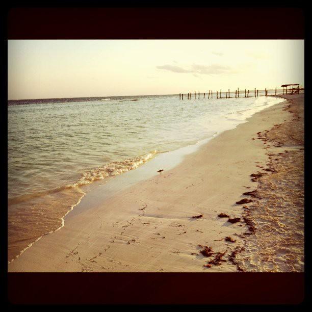 Sunset on the beach....