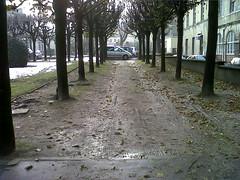 Hôpital BICETRE- 21 Décembre 2010