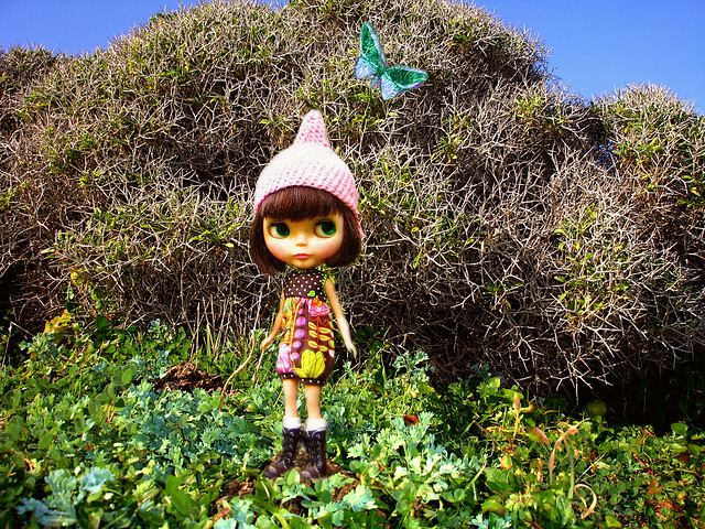 My blythe doll in Ikaria
