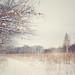 Marshlands by JMS2