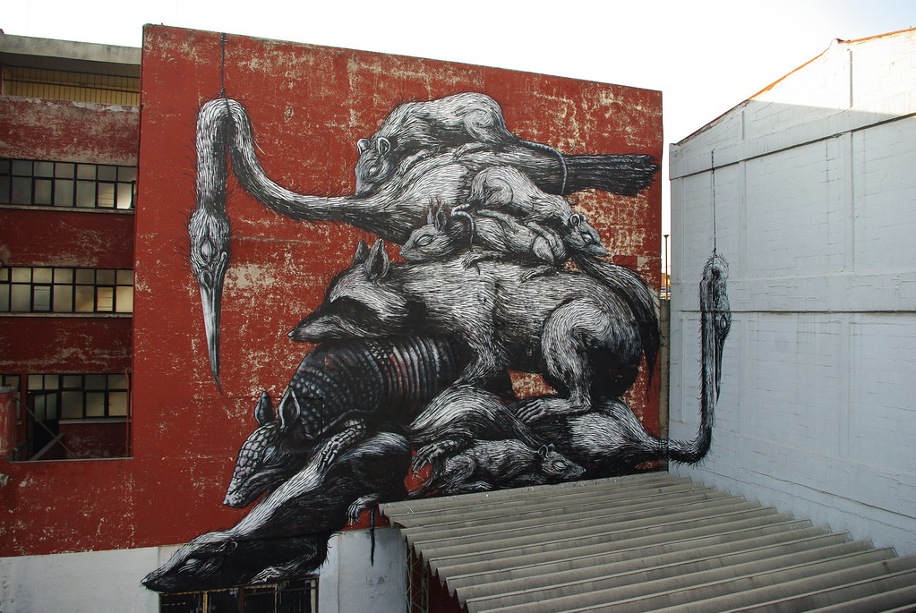 roa  u2014 graffiti