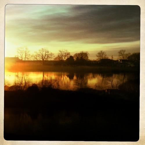trees sunrise pond delaware iphone iphonography hipstamatic wheatlyspond