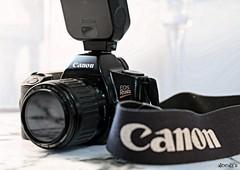 video camera(0.0), cameras & optics(1.0), digital camera(1.0), camera(1.0), single lens reflex camera(1.0), camera lens(1.0), reflex camera(1.0),