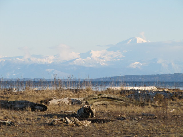 Mount Baker from Boundary Bay