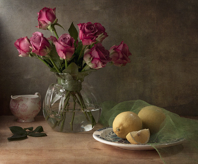 floral still life photography  a gallery on flickr, Beautiful flower