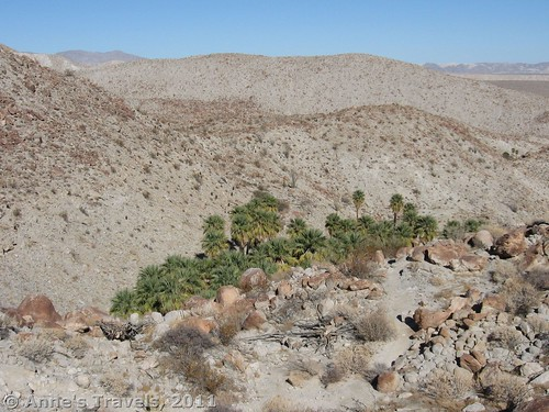 Above the Palm Bowl, Anza-Borrego Desert State Park, California