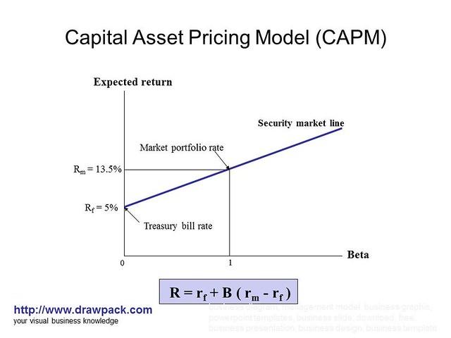 capital asset pricing model pdf