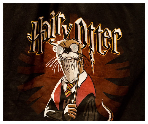 Hairy Otter (T-Shirt at Simply Seattle)