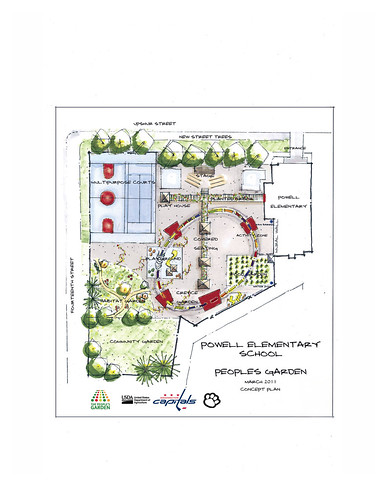School garden concept plan revealed to students at powell for School garden designs