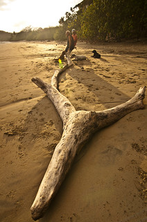 Playa Garza, Costa Rica. Two man sitting on a log at sunset