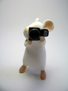 Photographer Mouse