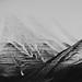 Snow Lines by SebbZee