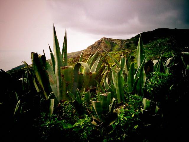 El Hierro - Flickr CC liferfe