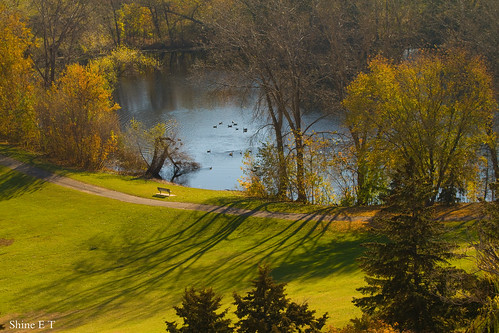 lake green beautiful landscape minneapolis edina