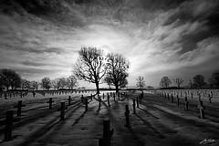 American Cemetery Margraten (Explored)