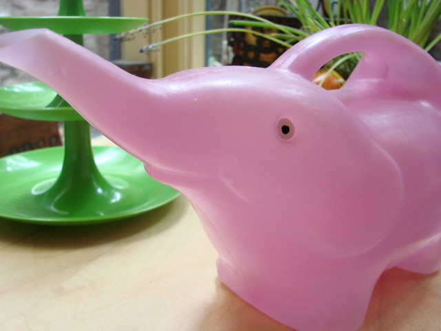 Pink Elephant Watering Can Flickr Photo Sharing