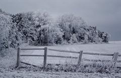 Winter 2010 - Gloucestershire