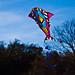 Kite Fest 2011-0087.jpg