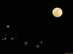 Worm Moon 2of3 (20110319-202052-PJG)