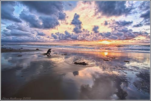 california sunset inspiration seascape surfing ritzcarlton orangecounty danapoint lagunabeach lagunaniguel saltcreekbeach monarchbeach elenanorthroup